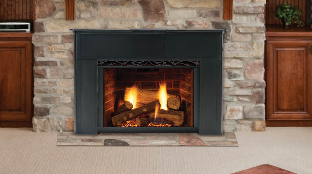 Outstanding Home Hearth Gas Inserts Download Free Architecture Designs Scobabritishbridgeorg